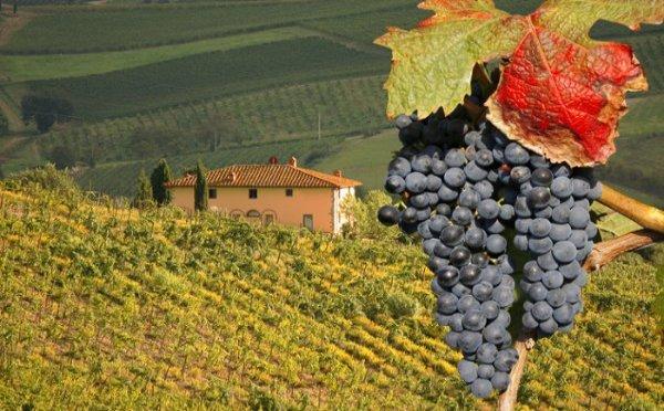 tuscany-Italynewe